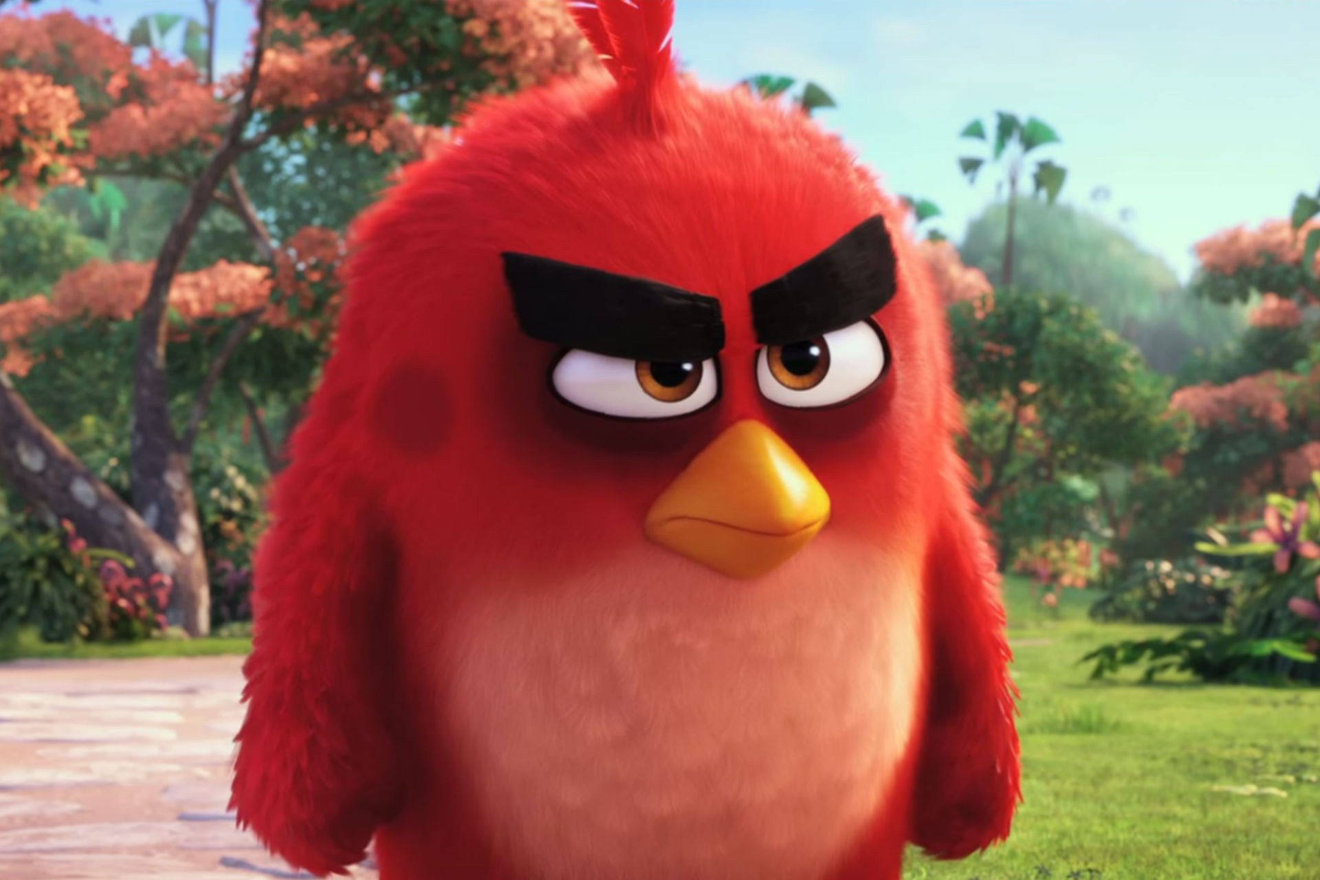 angrybirds