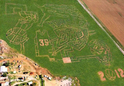 Oklahoma City Thunder Corn Maize