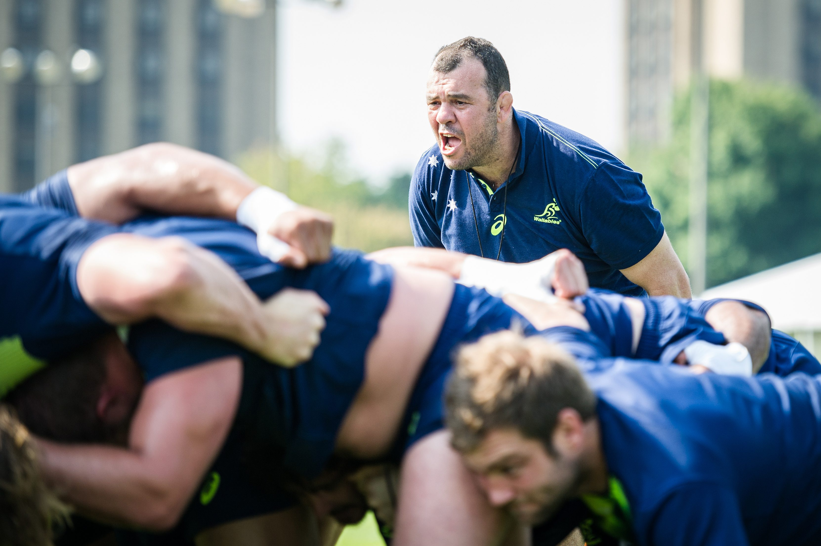 The Australian rugby union team train at the University of Notre Dame, Indiana, USA. Head coach Michael Cheika during a scrum session.