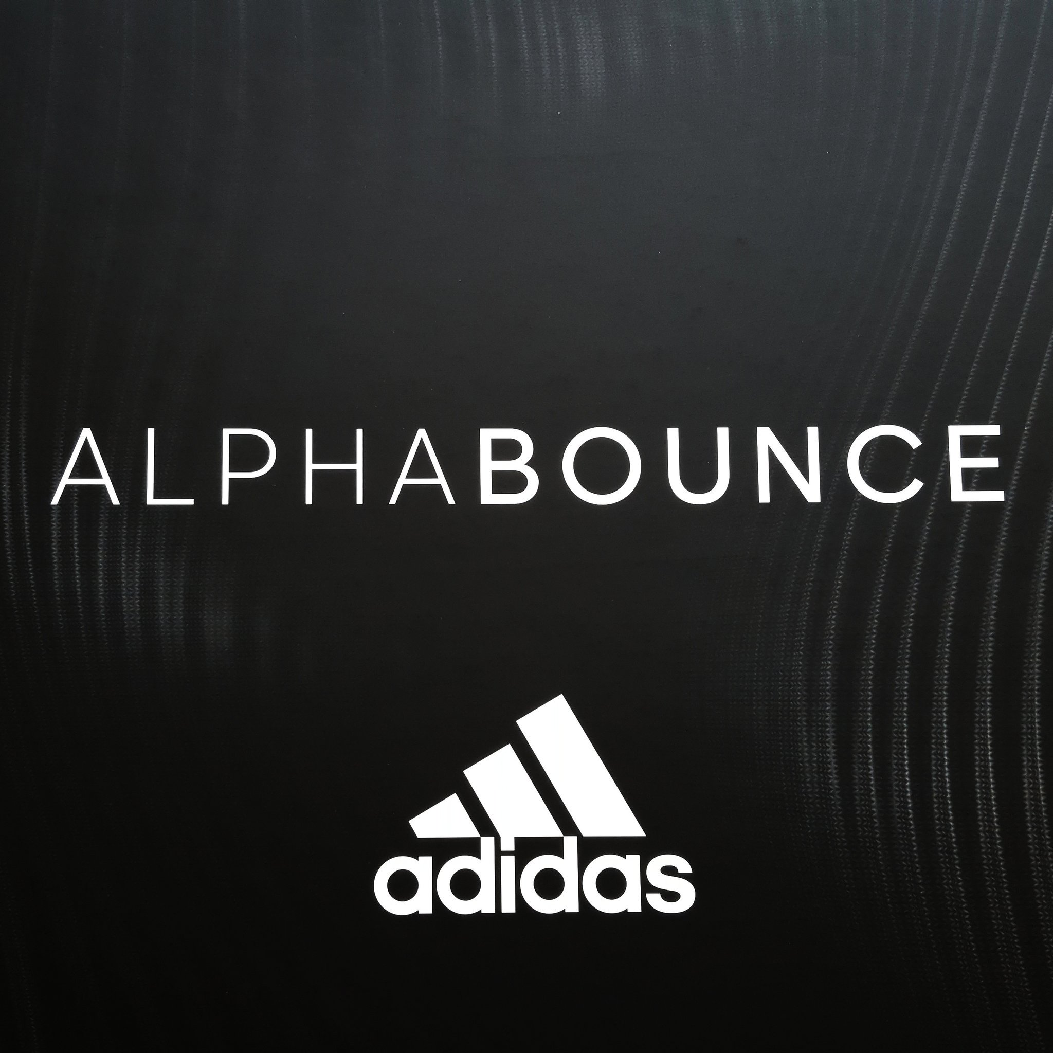 b3ec12b1c Special Delivery  The adidas AlphaBOUNCE Promo - Hardwood and Hollywood